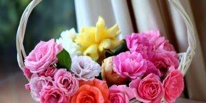 Bom Dia! Desejo que você jamais perca a fé na vida, vá em busca de seus sonhos!