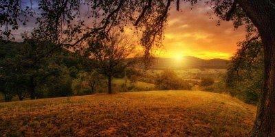 Bom Dia, que seu dia seja melhor que ontem, e melhor que amanhã!!!
