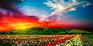 Mensagem de Bom Dia com reflexão! Faça do seu dia um ótimo dia!!!