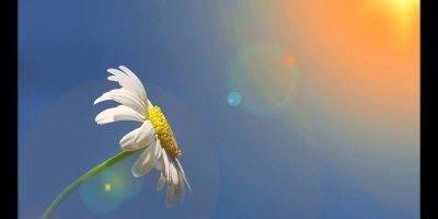 Mensagem de Bom Dia. Mantenha-se conectado a Deus, e tenha um bom dia!!!