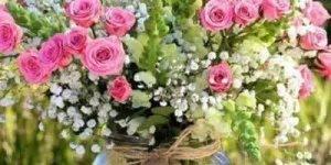 Mensagem de Bom Dia para amigo! Tenha um Bom Dia meu amigo!!