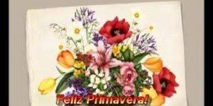 A primavera chegou! Vamos compartilhar amor, carinho, Feliz Primavera!!!