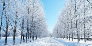 Bem Vindo Inverno, a estação do ano que aproxima as pessoas!