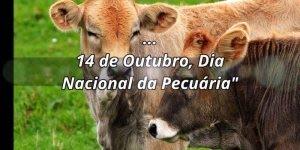 Dia 14 de Outubro é Dia Nacional da Pecuária, comemore este dia!!!