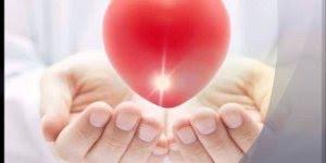 Dia 25 de novembro é Dia do Doador de Sangue, compartilhe este vídeo!!!