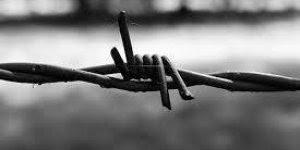 Dia 27 de Janeiro Dia Internacional em Memória das Vítimas do Holocausto.