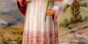 Dia 31 de agosto é Dia do Santo Raimundo Nonato, que Ele rogai por todos nós!!!