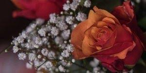 Homenagem a todas as mulheres - Desejamos um feliz dia da mulher a todas vocês!
