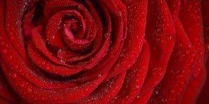 Trecho da música Roberto Carlos - Nossa Senhora - Para dia 12 de Outubro!
