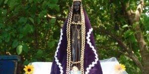 Video de Bom dia para desejar Feliz dia de Nossa Senhora de Aparecida