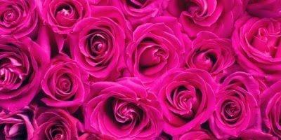 Mensagem de aniversário mãe minha rainha, te amo eternamente!!!