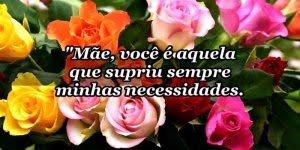 Mensagem de Feliz Ano Novo para mãe! Você é a mulher da minha vida!!!