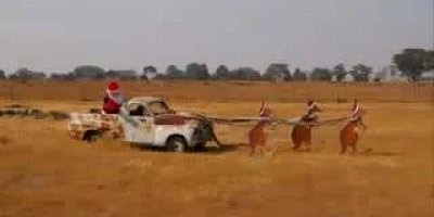 Mensagem de Feliz Natal! O natal esta chegando é época de espalhar amor!!!