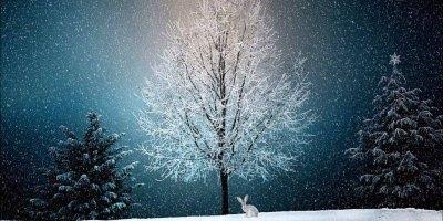 Mensagem de natal. Muita paz e harmonia para você, Deus abençoe sua vida!!!