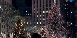Que imagens lindas! No Natal tudo se torna magico, o amor se torna maior!!!