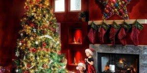 Vídeo de Natal para os amigos! Receba as mais lindas arvores de Natal!!!