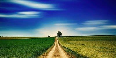 Mensagem motivacional. Para conquistar sonhos é preciso coragem e perseverança!