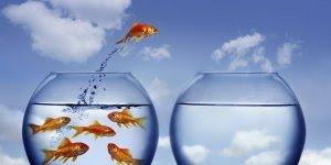 Mensagem motivacional só os fracos desistem, você vai querer ser um fraco?