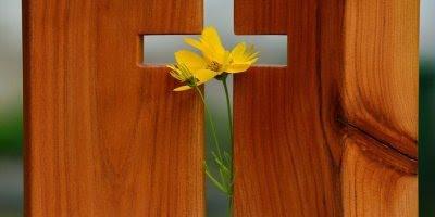 Mensagem Gospel para Facebook, Deus da Minha Salvação!