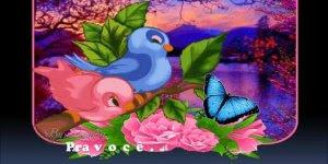 Mensagem para amigo(a) Gospel! Te desejo muita paz, e que Deus te abençoe!