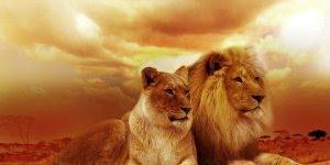Todo dia Deus se importa com você, pois Deus te ama, compartilhe essa mensagem!