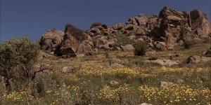 Vídeo com a história de Jesus ensinando a parábola da ovelha perdida!