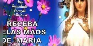 Mensagem de Bom Dia com a proteção de Maria Mãe intercessora!!!