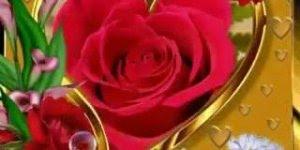 Mensagem de Bom Dia com Nossa Senhora Aparecida, que ela abençoe a todos!!!