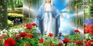 Musica Imaculada, Maria do povo, compartilhe com seus amigos do Facebook!