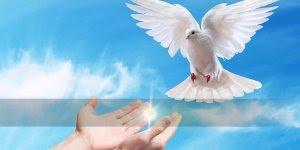 Vídeo com linda mensagem de Deus para você, vale a pena conferir!!!