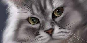 Acho que vi um gatinho nesse video, que lindo desenho, confira!