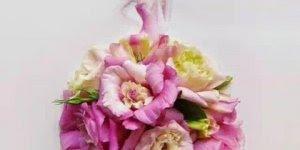 Arte de fotografar desenhos usando flores, trabalhos de Lim Zhi Weis!!!