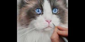 Artista desenhando gatinho, olha só esta riqueza de detalhes!!!