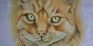 Desenhando um gato em tecido, uma obra de arte em forma de video!