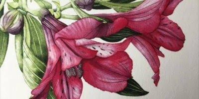 Desenho impecável de flores, olha só que trabalho incrível!!!