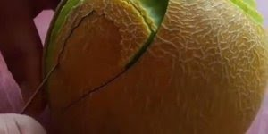 Obras de arte feitas em frutas, um trabalho lindíssimo, confira!!!