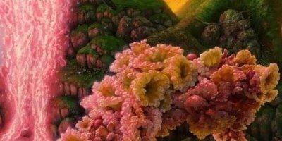 Quadro de flores com efeito fascinante, você vai se apaixonar!!!