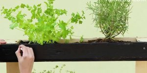 Transformando palete em suporte para plantar, olha só que legal!!!